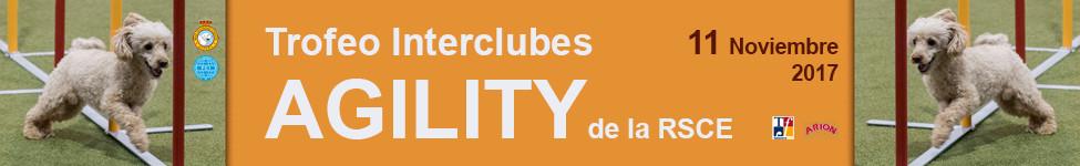 TROFEO INTERCLUBES AGILITY DE LA RSCE EN TALAVERA EN LA REINA